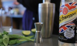 SCHWEPPES JUBILEE PARTY TIPS with Polly Betton